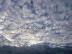 Mackerel sky Altocumulus Clouds